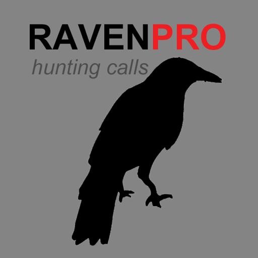 REAL Raven Hunting Calls - 7 REAL Raven CALLS & Raven Sounds! - Raven e-Caller - BLUETOOTH COMPATIBLE