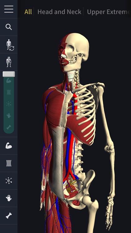 teamLabBody-3D Motion Human Anatomy-