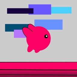 Bicolor Runner