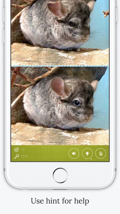 download Find the Difference in Chinchilla apps 2