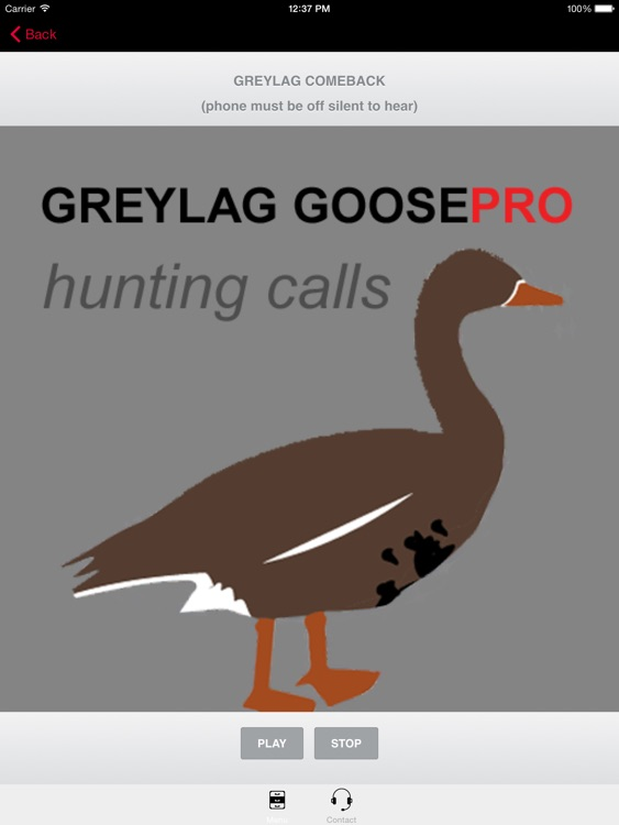 REAL Greylag Goose Hunting Calls -- Greylag Goose CALLS & Greylag Goose Sounds! (ad free) BLUETOOTH COMPATIBLE screenshot-3