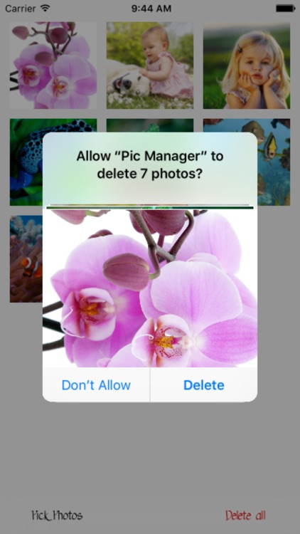 Pic Manager - Fast Deleter screenshot-3