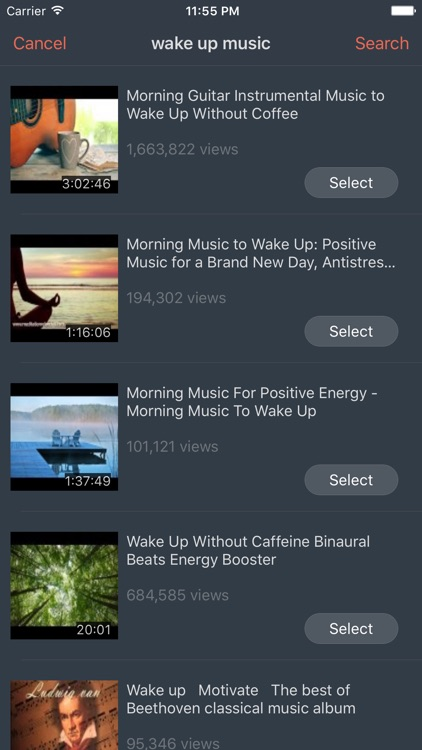 VidAlarm - Video Alarm for YouTube screenshot-4