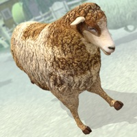 Codes for Sheep Racing Adventure in The Tiny Virtual Pet Town Hack