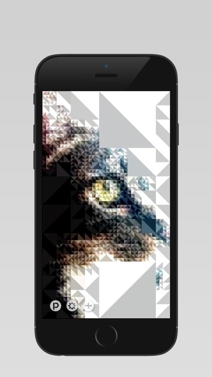Pixl™