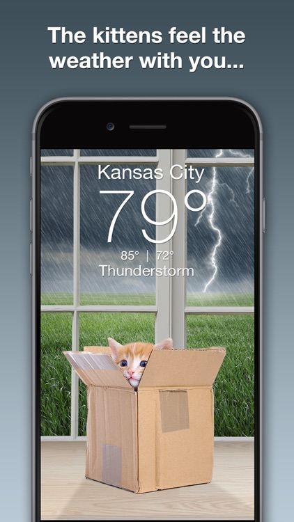Weather Kitty screenshot-1