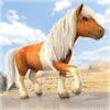 Little Pony Horse Riding   My Juegos de Caballos de Carreras Gratis