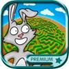 迷宫游戏世界小动物版 3到9岁宝宝儿童早教育儿益智软件 - 高级版