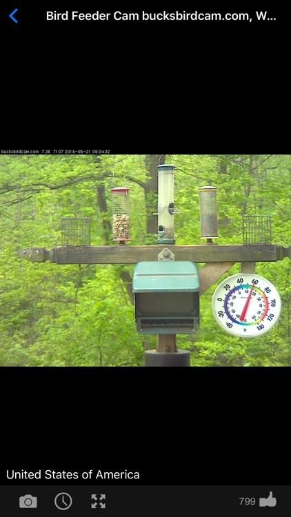 Web Camera Online - Live CCTV IP Video Cams Viewer screenshot-3