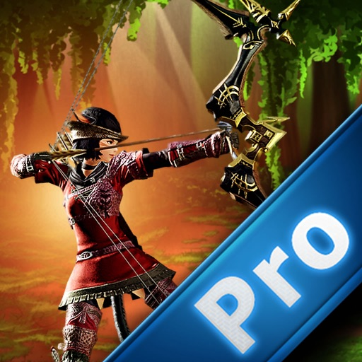 Archer Warrior Of Darkness PRO - Arrow Amazing Game