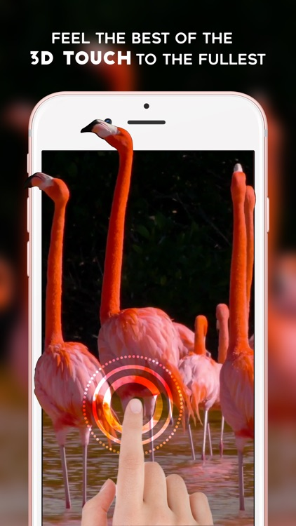 Live Wallpapers - Animated Themes & Backgrounds for iPhone 6S , 6S plus & iPhone SE screenshot-3