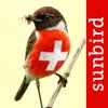 Vögel der Schweiz - ein Naturführer zum Bestimmen der heimischen Vogelarten in Garten, Wald und Wasser