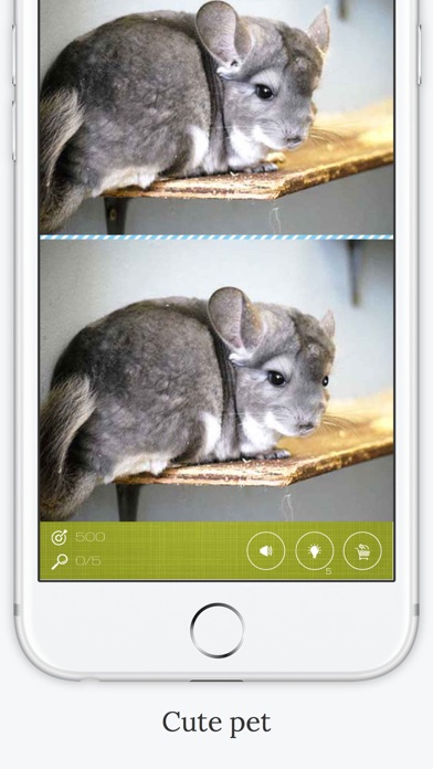 download Find the Difference in Chinchilla apps 3