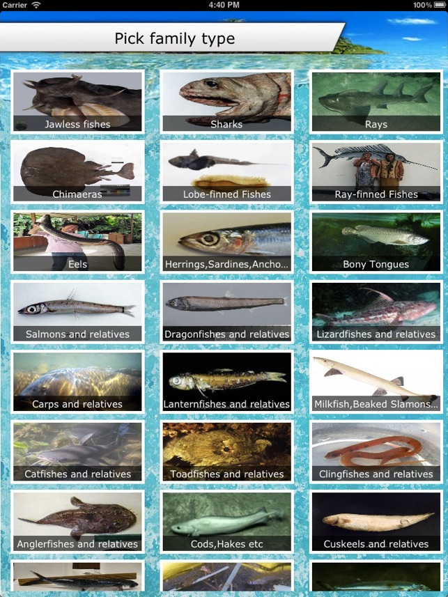 Fish id on the app store for Fish identification apps