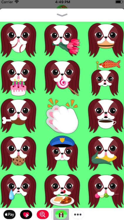 Red Sable Japanese Chin screenshot-4