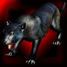 Activities of Cougar Sim: Mountain Puma 3D