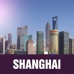 Shanghai Offline Guide