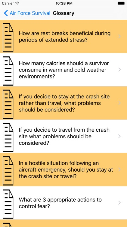 Air Force Survival Guide