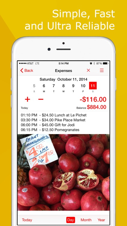 Money Tracker: Expense Manager