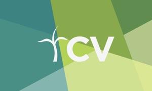 Christian Vision