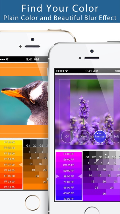 Squaready - Smart Layouter for Instagram screenshot-3