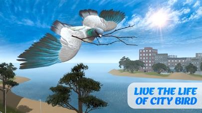 Tauben Vogel Überleben Simulator 3DScreenshot von 1