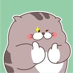 Chubby Cat Animated Stickers