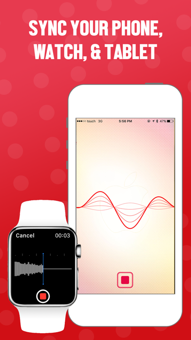 Voice Recorder Memos screenshot one