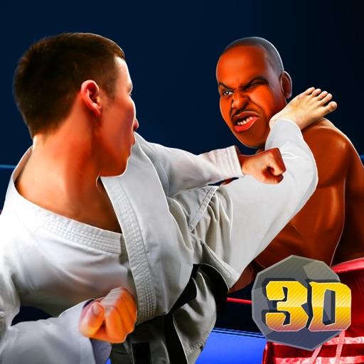 Boxing vs Kung Fu Fighting Sim by Natalya Staritsyna