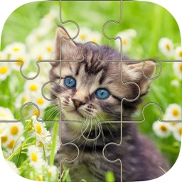 Cat Kitten Jigsaw - Puzzles Games for Girls Who Love Baby Animals