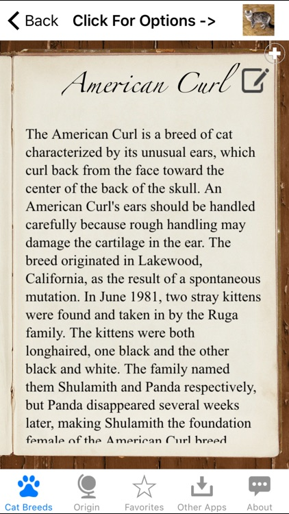 Encyclopedia of Cat Breeds