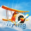 Flying sky: air flight simulat