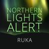 Northern Lights Alert Ruka