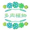 多肉植物 - 多肉植物养护宝典,植物百科,种花养花