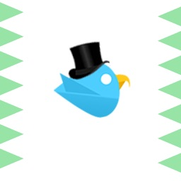 Best Bouncing Bird - Top Don't Touch The Corners Free Arcade Game