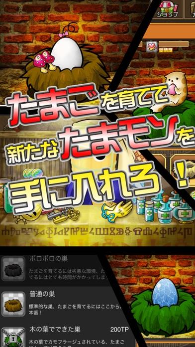 育成ゲーム たまポンQUESTのスクリーンショット4