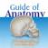 Anatomy Guide (Pocket Book)