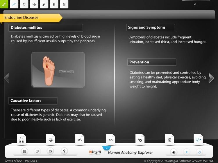 Human Anatomy Explorer - Endocrine System screenshot-4