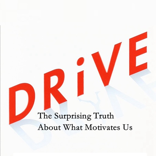 Quick Wisdom from Drive:Practical Guid
