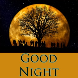 Good Night Greetings & Sms
