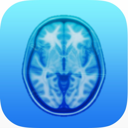 Brain Trainer Working Memory Training