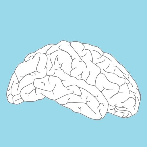 Cerebro y salud