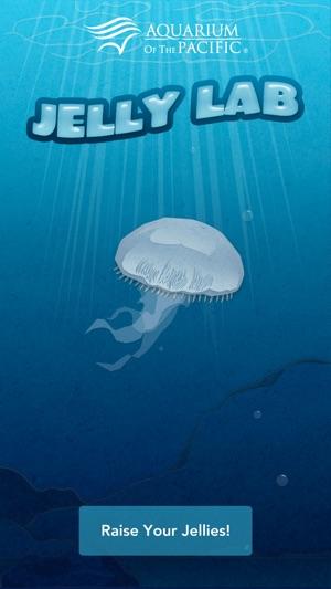 Aquarium of the Pacific: Jelly Lab