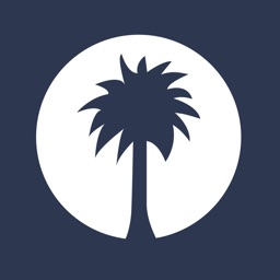 White Palm