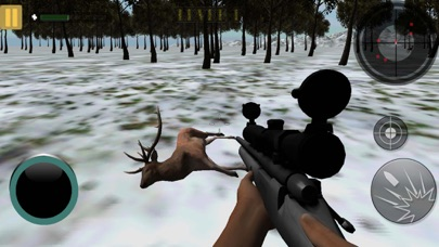 Stag Hunting In Jungle 2