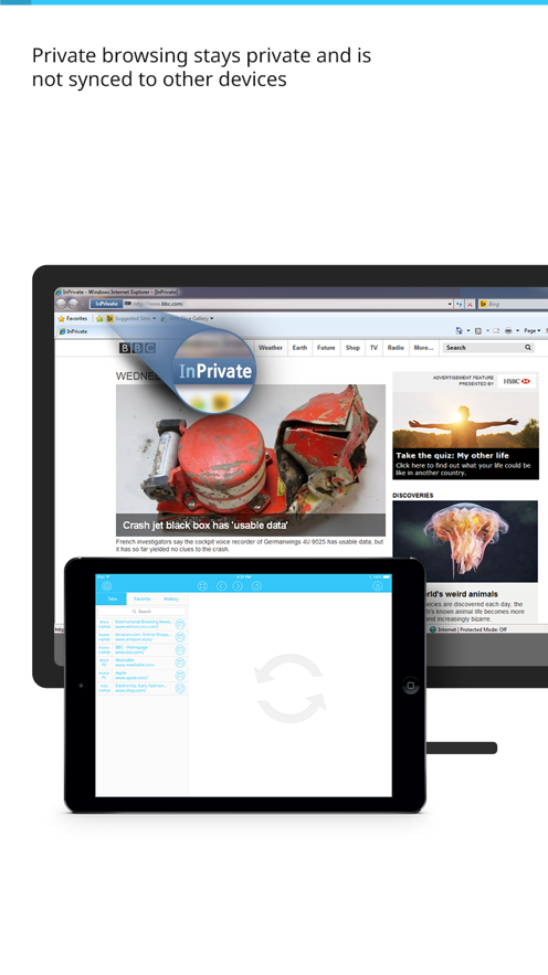 Crafty IE Sync for Microsoft Internet Explorer - Sync your MS IE web browsing tabs, favorites, and browser history to your iPad and iPhone. App 截图