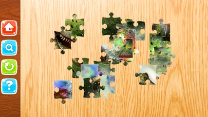 Little Dinosaur Jigsaw Puzzle Boards For Adults screenshot four