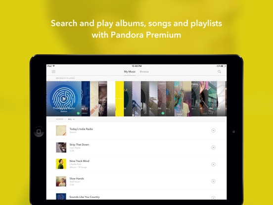 Pandora Music iPad