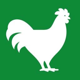 FlockPlenty - Chicken Egg Tracker