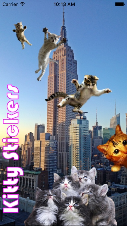 Kitty Stickers-Superimpose Photo Stamps! screenshot-0